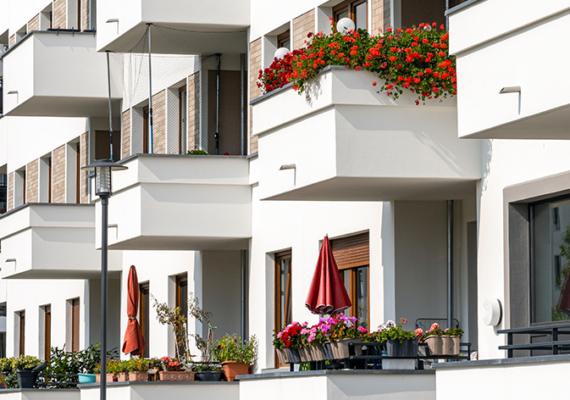 Comment créer son propre potager sur son balcon ?